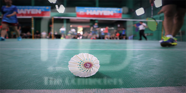 The Brief History of Badmintonsport